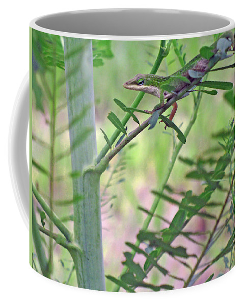 Anole Coffee Mug featuring the photograph Green Anole by Kenneth Albin