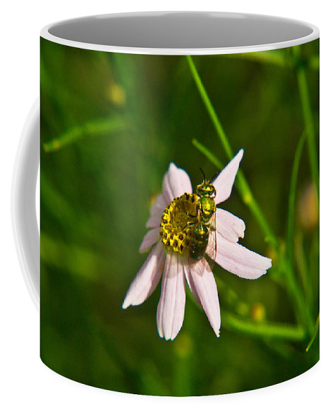 Green Coffee Mug featuring the photograph Green Bee Feeding by Douglas Barnett