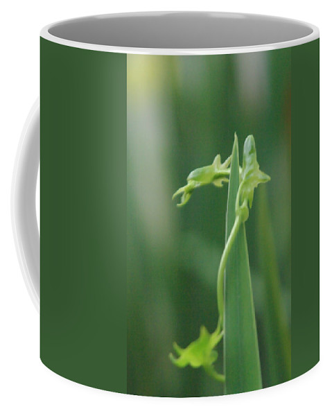 Dragon Coffee Mug featuring the photograph Green Dragon by Donna Blackhall