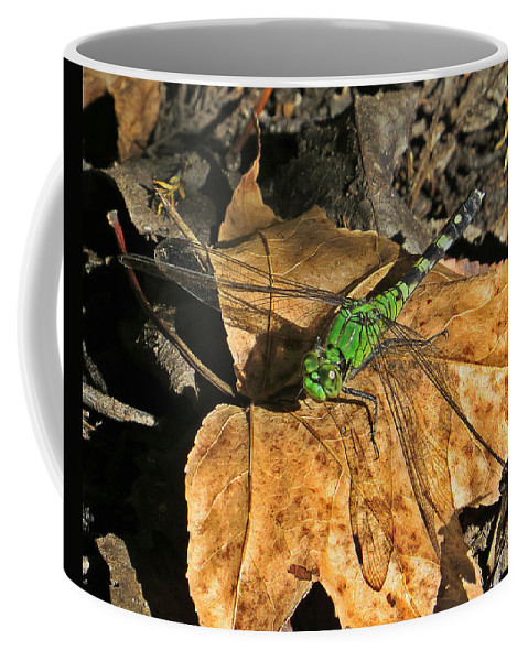 Animal Coffee Mug featuring the photograph Green Dragon by Norman Vedder