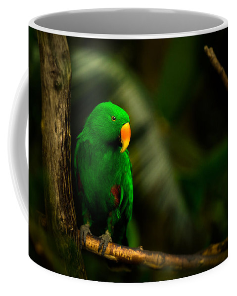 Bloedel Flora Bird Conservatory Coffee Mug featuring the photograph Green Eclectus Parrot Male by Peter v Quenter