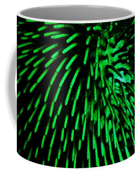 Clay Coffee Mug featuring the photograph Green Hairy Blob by Clayton Bruster