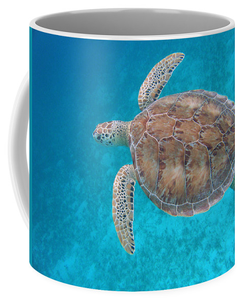 Green Sea Turtle Coffee Mug featuring the photograph Green In Blue by Kimberly Mohlenhoff