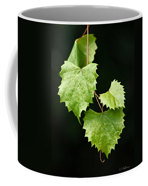 Flora Coffee Mug featuring the photograph Green Leaves by Christopher Holmes