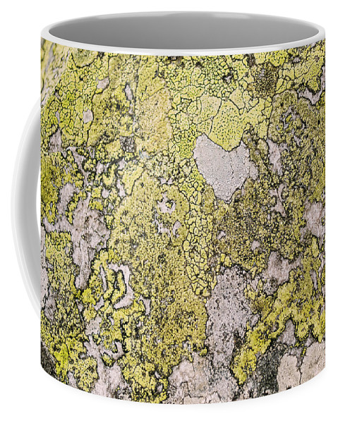 Natural Pattern Coffee Mug featuring the photograph Green Moss On Rock Pattern by Pati Photography