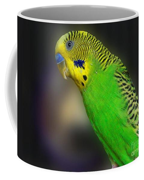 Bird Coffee Mug featuring the photograph Green Parakeet Portrait by Jai Johnson