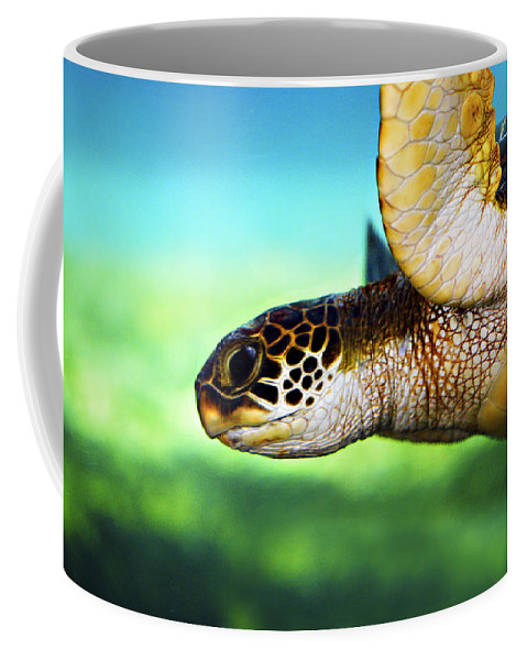 Green Coffee Mug featuring the photograph Green Sea Turtle by Marilyn Hunt