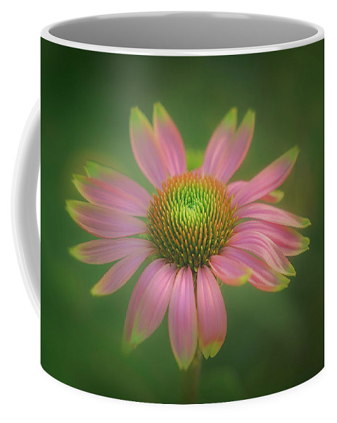 Flower Coffee Mug featuring the photograph Green Tipped Coneflower by S A Littau