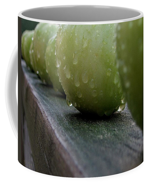 Green Tomato Coffee Mug featuring the photograph Green Tomato's by Robert Meanor