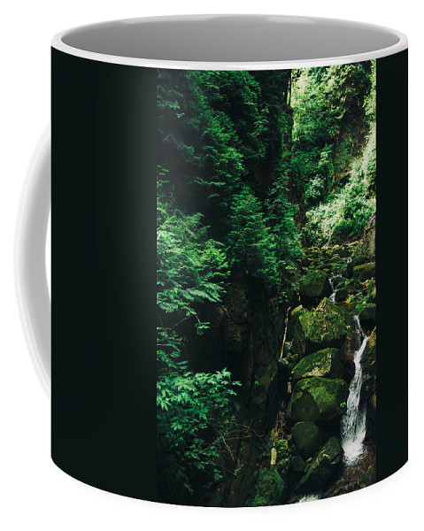 Poland Coffee Mug featuring the photograph Green Waterfall by Pati Photography