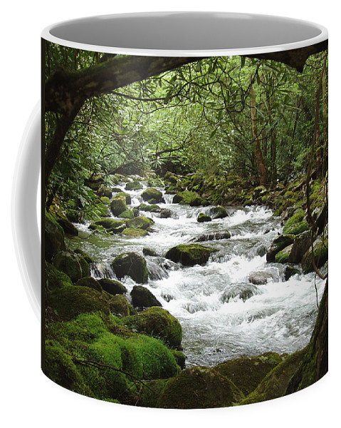 Smoky Mountains Coffee Mug featuring the photograph Greenbrier River Scene 2 by Nancy Mueller