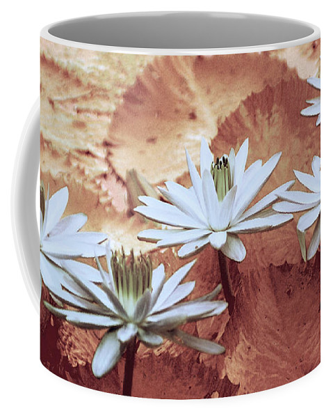 Flowers Coffee Mug featuring the photograph Greeting The Day by Holly Kempe
