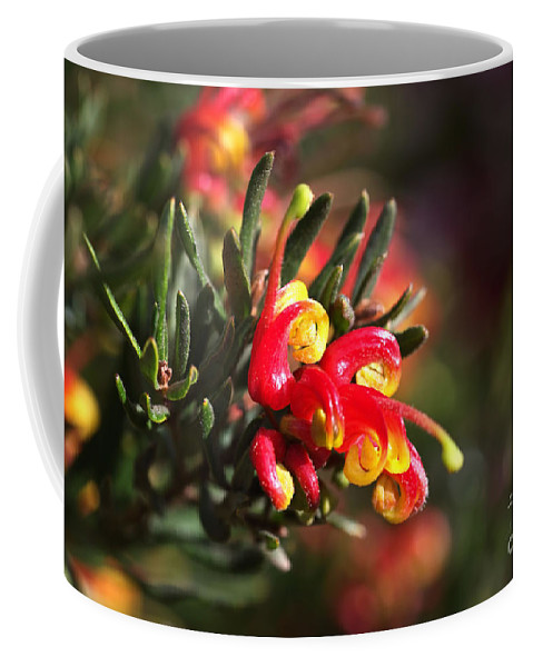 Grevillea Bud Coffee Mug featuring the photograph Grevillea Ground Cover by Joy Watson