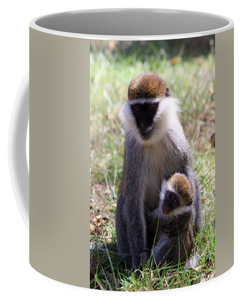 Monkey Coffee Mug featuring the photograph Grivet Monkey At Lake Awassa by Aidan Moran