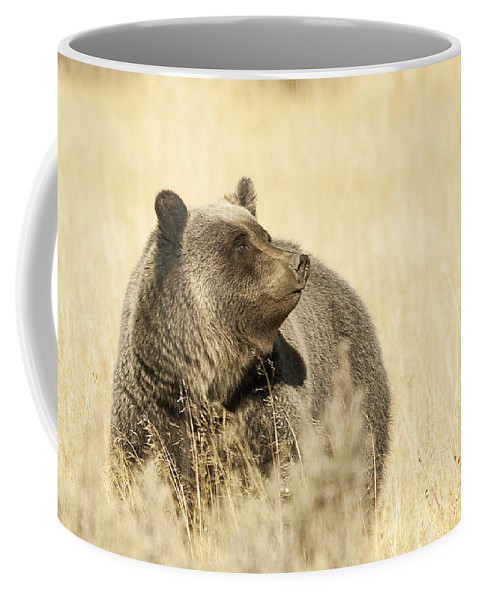 Grizzly Coffee Mug featuring the photograph Grizzly Bear by Gary Beeler