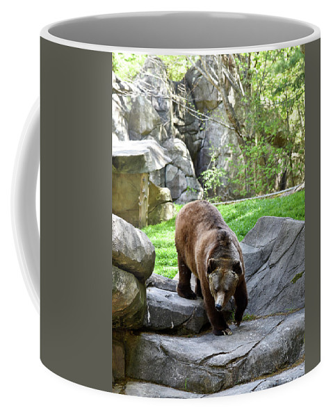 Grizzly Coffee Mug featuring the photograph Grizzly by Sherri Johnson