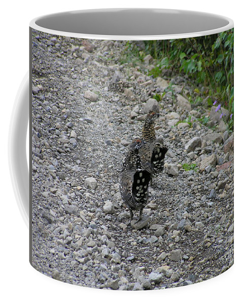 Grouse Coffee Mug featuring the photograph Grouse Pair by Louise Magno