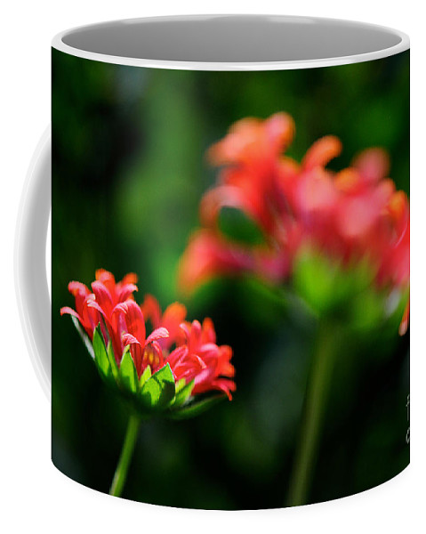 Floral Coffee Mug featuring the photograph Growing Up by Lois Bryan