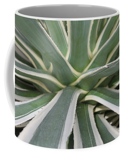 Nature Coffee Mug featuring the photograph Growth by Munir Alawi