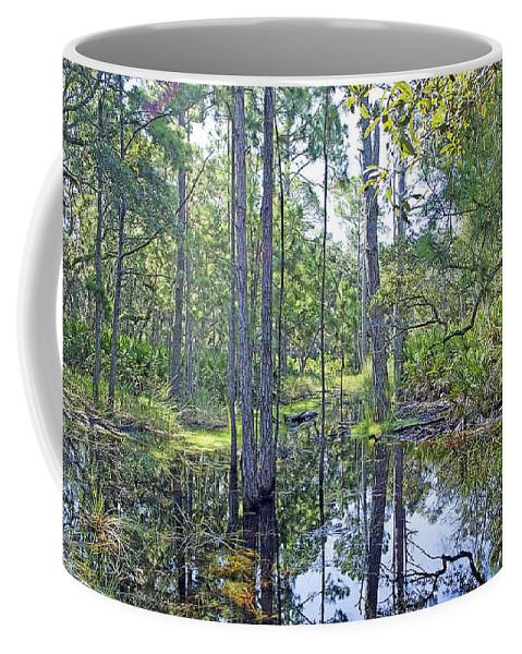 Marsh Coffee Mug featuring the photograph Guana Marsh by Kenneth Albin