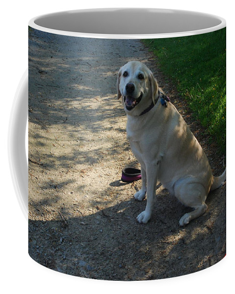 Guide Dog Coffee Mug featuring the photograph Guide Dog by Ee Photography