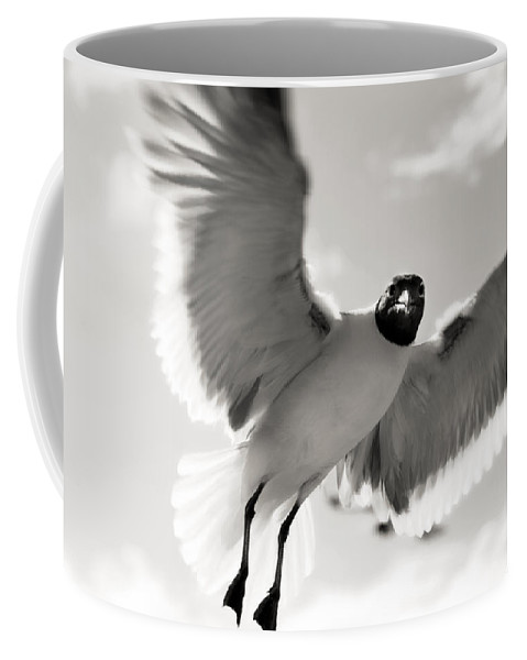 Seagull Coffee Mug featuring the photograph Gull In Flight 2 by Marilyn Hunt