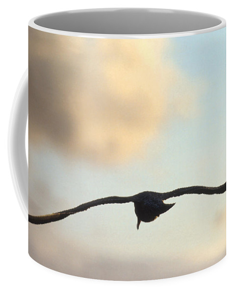 Bird Coffee Mug featuring the photograph Gull by Jerry McElroy