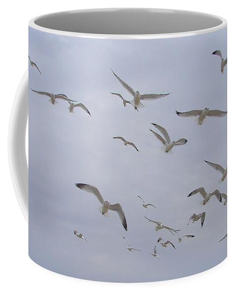 Birds Sky White Coffee Mug featuring the photograph Gulls by Luciana Seymour