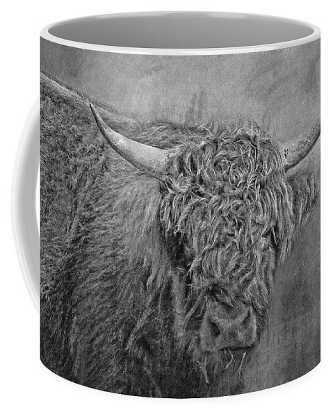 Highland Cow Coffee Mug featuring the photograph Hairy Highlander Bw by HH Photography of Florida