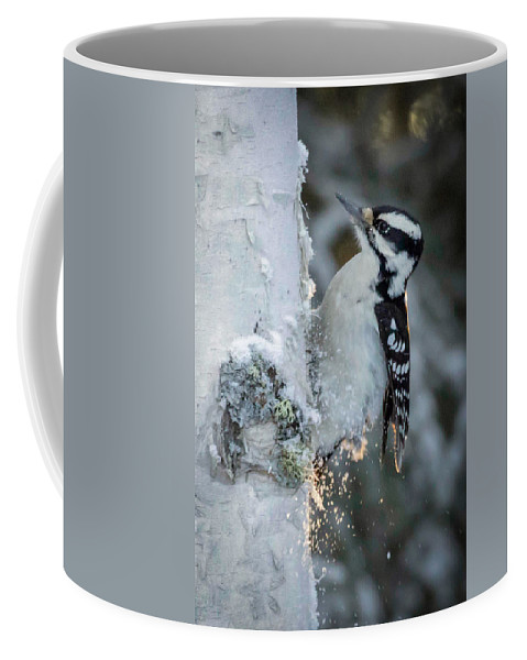 Hairy Coffee Mug featuring the photograph Hairy Woodpecker Female by Dee Carpenter