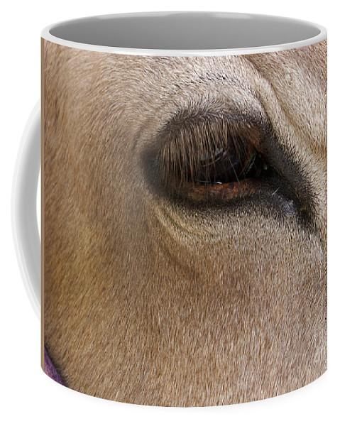 Calf Coffee Mug featuring the photograph Half Asleep by Ann Horn