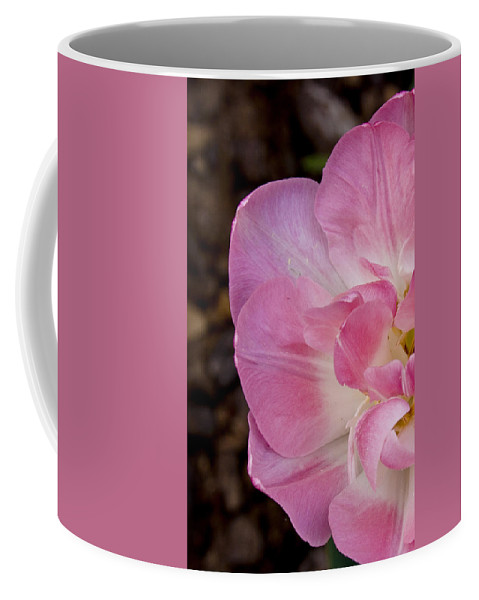 Flowers Coffee Mug featuring the photograph Half Tulip by Ches Black