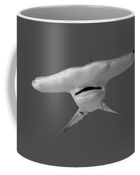 Hammerhead Coffee Mug featuring the photograph Hammerhead 2_t-shirt by Thomas Major