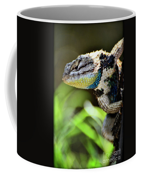 Spiny Lizard Coffee Mug featuring the photograph Hangin' Out by Saija Lehtonen