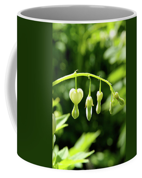 Blossom Coffee Mug featuring the photograph Hanging Around by Laddie Halupa