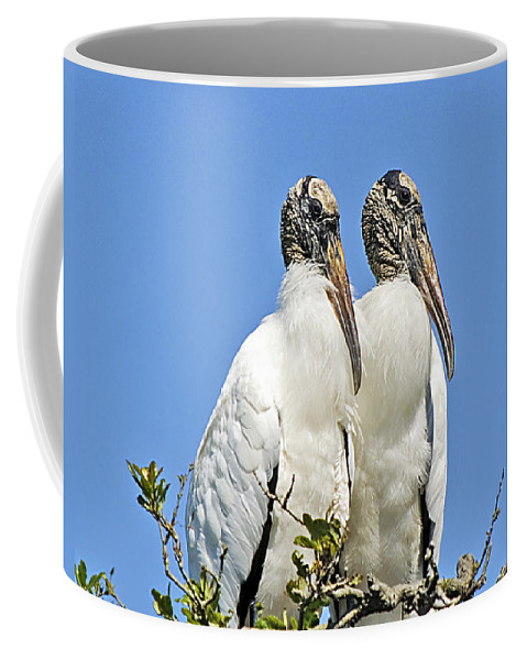 Nature Coffee Mug featuring the photograph Happy Couple by Kenneth Albin