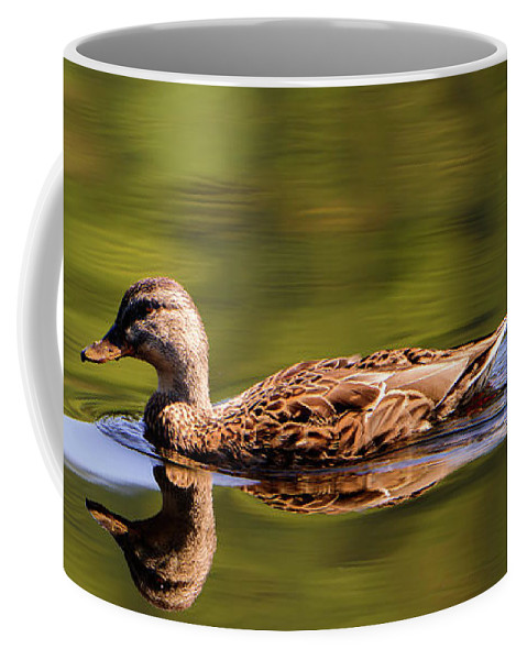Duck Coffee Mug featuring the photograph Happy Duck by Sherman Perry