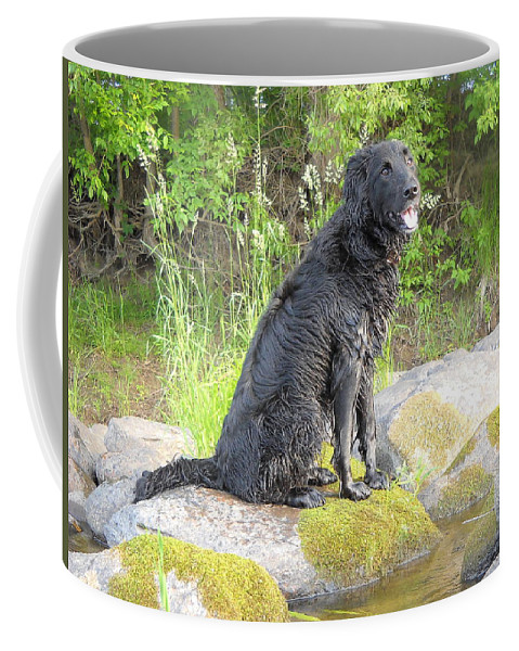 Mississippi River Coffee Mug featuring the photograph Happy Happy Dog At Dawn by Kent Lorentzen