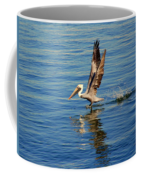 Pelican Coffee Mug featuring the photograph Happy Landing Pelican by Susanne Van Hulst