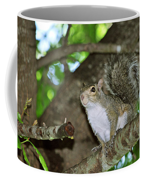 Critters Coffee Mug featuring the photograph Happy Lil' Gal by Adele Moscaritolo