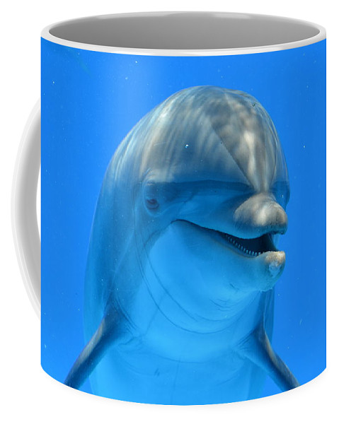 Dolphin Coffee Mug featuring the photograph Happy Smiling Dolphin by Richard Bryce and Family