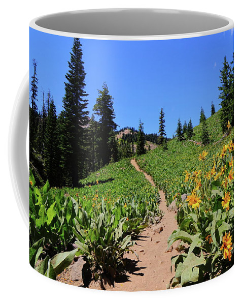 Trail Coffee Mug featuring the photograph Happy Trails by Leia Hewitt