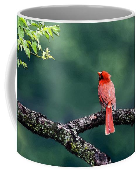 Cardinal Coffee Mug featuring the photograph Harmony by Betty LaRue