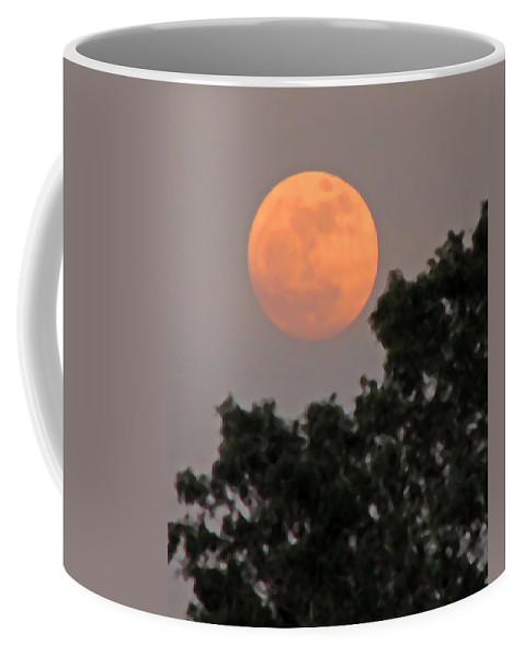 Moon Coffee Mug featuring the photograph Harvest Moonrise by Peg Urban
