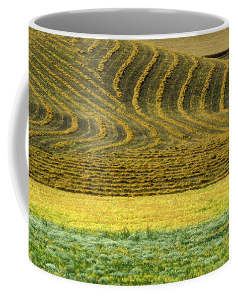 Farmland Coffee Mug featuring the photograph Harvested Fields Of The Palouse by Sandra Bronstein