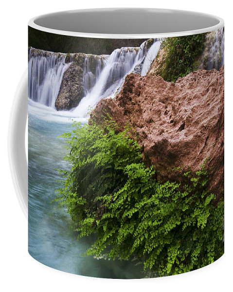 Havasu Creek Coffee Mug featuring the photograph Havasu Creek Grand Canyon 3 by Bob Christopher
