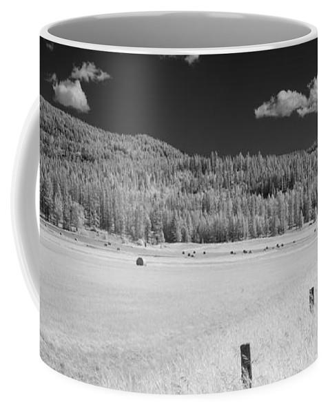 B&w Coffee Mug featuring the photograph Hayfield by Lee Santa