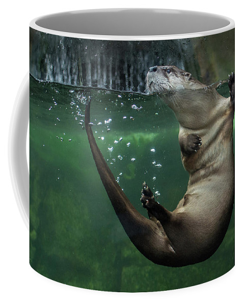 Otters Coffee Mug featuring the photograph Head Above Water by Greg Nyquist