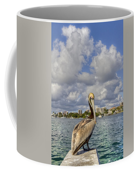 Bird Coffee Mug featuring the photograph Head In The Clouds by Debra and Dave Vanderlaan
