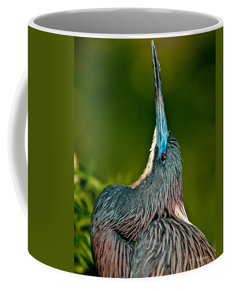 Art Coffee Mug featuring the photograph Heads Up by Christopher Holmes
